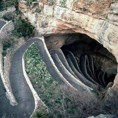 When you decide to travel New Mexico you should add Carlsbad Caverns to your list! It is an amazing sight that will add to your lasting experience of New Mexico.the Land of Enchantment. The Places Youll Go, Places To See, Carlsbad Caverns National Park, Carlsbad Caverns New Mexico, Dangerous Roads, Adventure Is Out There, Wonders Of The World, Places To Travel, Beautiful Places