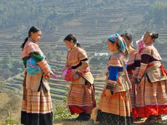 Vietnam : climat, paysages, villes principales... retrouvez avec GEO.fr, le guide de voyage Vietnam regroupant toutes les infos nécessaires pour préparer votre voyage