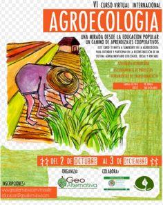 VI CURSO VIRTUAL INTERNACIONAL AGROECOLOGÍA
