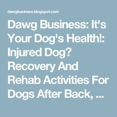 Dawg Business: It's Your Dog's Health!: Injured Dog? Recovery And Rehab Activities For Dogs After Back, Hip, Leg And Knee Injuries
