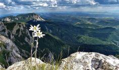 Harghita region - Romania