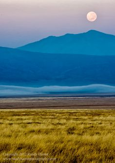 This image was taken shortly after our descent into the Ngorongoro Crater. We watched the moon slip behind the wall of the crater rim while a mysterious layer of fog lay at the base. We were the only vehicles in the crater for the first hour or so and it was like we had the entire park to ourselves. This is the beauty of an early morning rise.  Photo taken by Thomson Safaris' guest and professional photography trip leader, Randy Hanna.