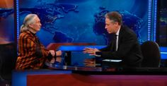 Jane Goodall on The Daily Show: Go see 'Chimpanzee' - a portion of ticket sales from the first week will be donated to the Jane Goodall Institute to help protect wild chimpanzees! OpensApril 20th and that promotion runs till the 26th.