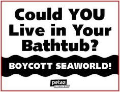 Boycott SeaWorld. The whales and dolphins want to be free.
