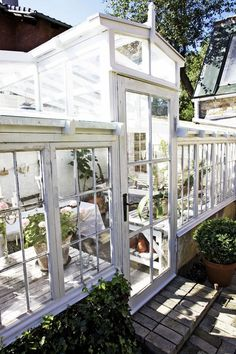 greenhouses made from old windows. White greenhouses, DIY greenhouse inspiration.