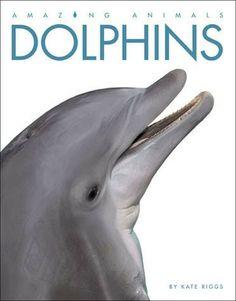 Amazing Animals -- Dolphins