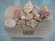 SOLD  Small Wooden Sea Shell Jewelry Box by PISeaGlass on Etsy