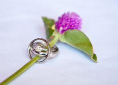 Wedding Rings - Photo Source • Sphynge Photography