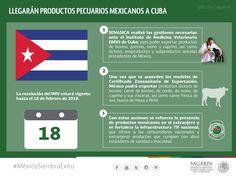 Llegarán productos pecuarios mexicanos a Cuba.SAGARPA SAGARPAMX #MéxicoSiembraÉxito