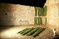 ¡Que mala hierba nunca muera! El making of de la portada de Yorokobu enero en http://www.yorokobu.es