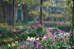 images of flowers in Claude Monet's flower garden