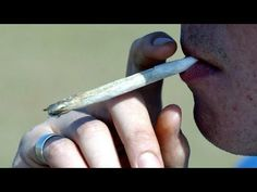 Drug dealer arrested after mistaking police car for taxi - BBC News