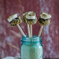S'mores on a Stick - Marshmallow Pops!