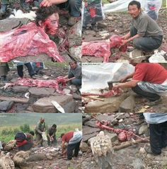 This is in burma only because he is a muslem they kill him If you are a human say somthing ...do somthig ..please