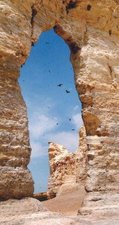 Birds circle around and through portions of Monument Rocks, Gove County, Kansas.