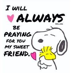 ●••°‿✿⁀° Ƒɽἰҽηɖʂɧἰƥ ‿✿⁀°••● ~ Sending Prayers and Hugs. ❤️