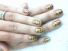 leopardo The Creation, Hands