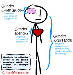 Demonstrates the difference between gender orientation, gender identity, and gender expression. It also demonstrates the social construction theory learned in week nine, and states that gender is a multidimensional concept. Genderqueer, Kids Wallpaper, Neurology, Transgender, Inspire Me, Counseling, Feminism, Equality, Identity