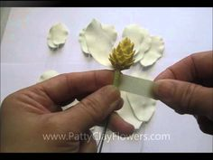 Magnolia Flower Tutorial - Making realistic looking flowers is never easy, either for the beginner or the veteran. This is a very nice tutorial for both. A great way to start and some new techniques for the pro.
