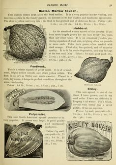 1894 - Seed potatoes and early seeds / - Biodiversity Heritage Library