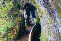 Levada do Furado, Madeira Funchal, Portugal Country, Azores, Country Art, Dali, Beautiful Islands, Botanical Gardens, Day Trips, National Geographic