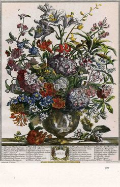 When framed, this vintage art print of Robert Furber's 1730's engraving of July's blooming flowers will make a fabulous Wedding, Anniversary or New Baby gift! This print was carefully rescued from a 1940s botanical book along with the eleven other historically accurate prints of Furber's monthly blooming flower arrangements. Meaningful gift for a 1st anniversary (paper) or as a display of family members' birth months. At AngelGrace on Etsy, $15 ea.
