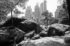 The Rambles, Central Park, New York City