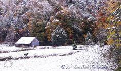 First Snow of the Season, Townsend, TN, GSMNP