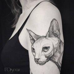 Sketch work sphynx tattoo on the left upper arm. Artista Tatuador: L'oiseau · Franck Soler