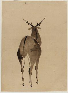 "heaveninawildflower: "" 'Deer' ( Edo period). Ink on paper by Katsushika Hokusai 葛飾北斎 (1760 - 1849). Image and text courtesy Freer Sackler. Japanese Art Copyright with museum. """