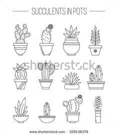 Cactus Photos et images de stock | Shutterstock