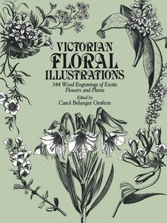 Over 340 handsome and botanically accurate wood engravings: baobab tree, quaking grass, winged pea, and many other unusual plants. Each illustration includes the scientific name and brief description.