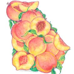 Series of State of Georgia Prints - Peaches- Not Alabama, but this is a beautiful picture of our neighboring state!