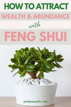 How to Feng Shui your Wallet and Attract more Wealth. According to Feng Shui, you should treat your wallet as a temple that holds and honours your money. It's another Feng Shui way to attract wealth, prosperity and abundance. #fengshui #wealth House Cleaning Tips, Diy Cleaning Products, Cleaning Hacks, Decorating Small Spaces, Decorating Your Home, Feng Shui Your Wallet, Career Inspiration, Home Organization Hacks, Love Home