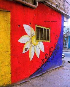 جمال هالحائط .. ��  الله يمسيكم بالخير ❤️�� . #smile #sun #coffee #color #gaza #good #green #p #picture #palestine #photography #follow #follow #تصوير #تصويري #فخم #فلسطين #فلسطيني #غزة #غزاوي #الوان #صورة ❤️ http://tipsrazzi.com/ipost/1510952472025028897/?code=BT3-0SXjNkh