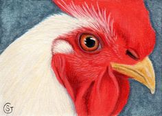 ACEO Rooster White Chicken  Art ORIGINAL  MIxed Media Sherry Goeben #Miniature