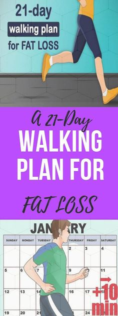 Health Guru, Health And Wellness, Gut Health, Health Trends, Easy Weight Loss, Lose Weight, Pilates, Fitness Diet, Health Fitness