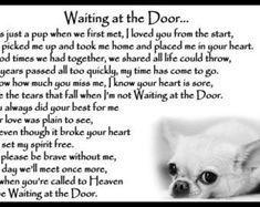 Shih Tzu Dog Pet Loss Memorial Bereavement Fridge by Chaffys Pet Quotes Dog, Animal Quotes, Dogs Golden Retriever, Retriever Dog, The Beautiful South, Years Passed, Shih Tzu Dog, Pet Loss, Bereavement