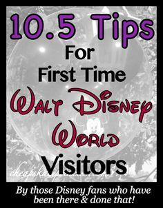 Tips for 1st Time Disney World visitors (vacation planning article)
