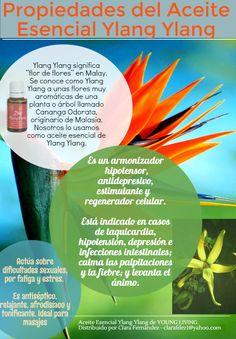 Aceite Esencial de Ylang Ylang (Español) - Propiedades - Young Living