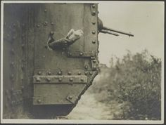 Carrier pigeon sent from a British Tank, France ca.1918.