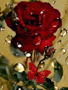 GIFS HERMOSOS: flores encontrads en la web I Love You Pictures, Beautiful Flowers Pictures, Beautiful Gif, Beautiful Roses, Spiritual Images, Romantic Gif, Flowers Gif, Bouquet, Iphone 6 Wallpaper