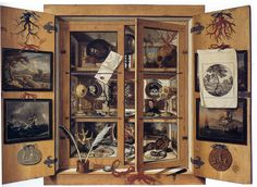 11 Wonderful Wunderkammer, Or Curiosity Cabinets