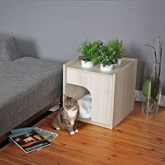 20 Weird Facts About Cats You Probably Didn't Know Cat Bed. Maybe she wouldn't want to sleep in our bed all the time if she had her own? Wooden Cat House, Cat House Diy, House For Cats, Niche Chat, Cat Room, Pet Furniture, Cat Facts, Weird Facts, Pet Home