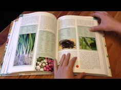 """""""Paleo Approach"""" Book.  Want a sneak peek of inside The Paleo Approach? Sarah walks you through what's included in this guidebook while flipping through! This video from my YouTube Channel is just a quick tour (the book is so big that giving you a broad overview takes 13 minutes!) but you get to see just how comprehensive and detailed this book is."""