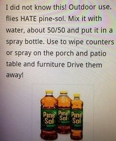 Flies hate Pine Sol just in case your running away from zombies in mid apocalypse . or just if you are camping and the blood suckers are driving you nuts Diy Cleaning Products, Cleaning Solutions, Cleaning Hacks, Cleaning Supplies, Cleaning Challenge, Pest Solutions, 1000 Lifehacks, Grand Menage, Just In Case