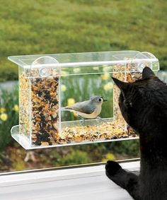 Look at this #zulilyfind! One-Way Mirror Feeder #zulilyfinds  Bought one for my elderly Aunt who placed it on her mobile home window and enjoyed hours of watching the birds.  She lived in Cincinnati..winters can be rough on birds....