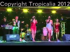 Tropicalia Show Production is a young vibrant London based established company wholly run by distinguished professional performers. Events, Dance, Concert, Room, Dancing, Bedroom, Concerts, Rooms, Rum