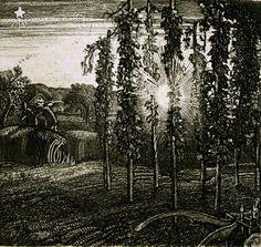 Graham Sutherland. 1925. Cray Fields, etching
