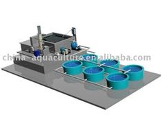 Recirculation Aquaculture Systems - Buy Recirculation Aquaculture Systems,Recirculating Aquaculture System,Aquaculture Recirculating System ...